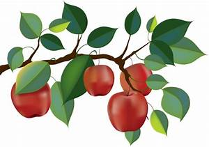Red Apple Tree Clipart (42+)