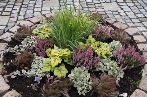 Garten Herbst Bepflanzung by Willkommen Herbst Blumen Krempl G 228 Rtnerei Und