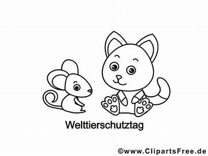 Colouring Mouse Cat Malvorlage Titel Ausmalbilder