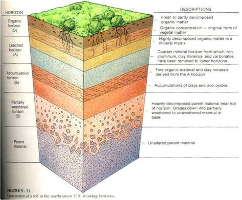 soil profile diagram  school soil layers diagram soil