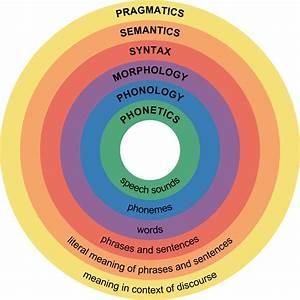 Psycholinguistics  Morphology