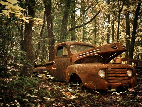 Forest, White, Old, City, Car, Abandoned, Wood