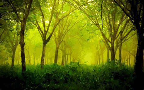 nature artwork trees wallpaper
