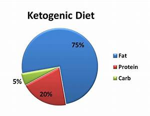 Keto Diet Pie Chart Kill Cancer With Oxygen And Ketogenic Diet Health