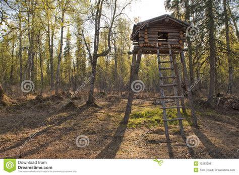 wooden tree fort stock photo image  raised nature