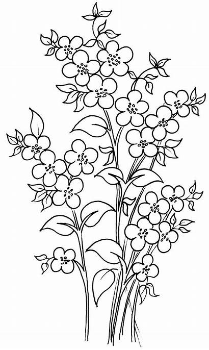Painting Glass Outline Flowers Templates Interior