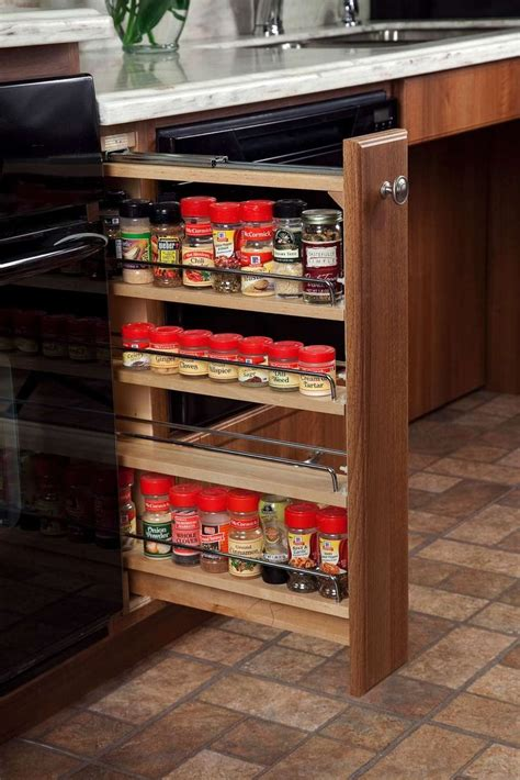 Cool Spice Rack Ideas by 25 Best Ideas About Spice Racks For Cabinets On