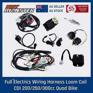 Full Wiring Harness Loom Solenoid Coil Regulator Cdi 150  200  250cc Atv Quad Bike