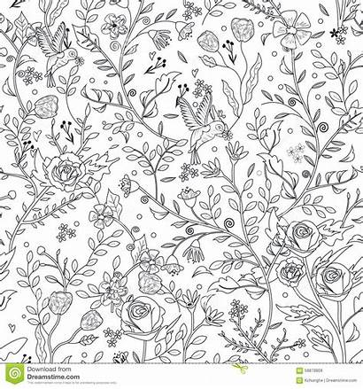 Pattern Floral Coloring Seamless Pages Graceful Vector