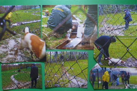 test attitudinali lavoro on line societ 224 italiana terriers cionato sociale di