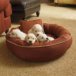 Chew resistant cordura pet bed dog bed traditional pet for Cordura dog bed
