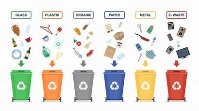 Garbage Sorting Vector Background Waste Management Recycle