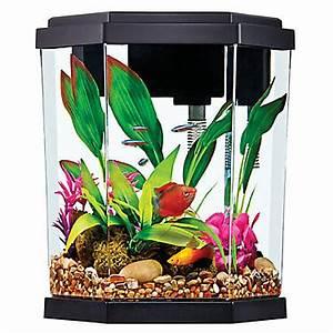 Top Fin 2 Gallon Intrigue Aquarium Kit Fish Starter