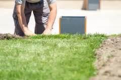 Rasen Vertikutieren Ja Oder Nein : eine wiese pflegen m hen d ngen und kalken ~ Buech-reservation.com Haus und Dekorationen