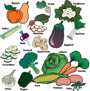 Vegetable | Food And Fruit
