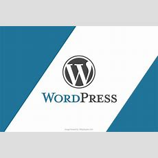 Important Wordpress Affiliate Plugins, Must For An