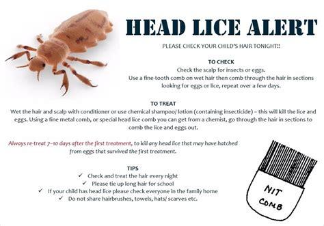 st marys rc primary school head lice information