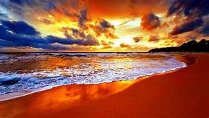 Seashore, During, Sunset, Hd, Nature, Wallpapers
