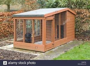 a black cocker spaniel dog and a wooden dog kennel outside With outside wooden dog kennels