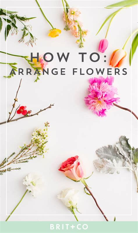 Arranging Flowers by Here S Everything You Need To About Flower Arranging