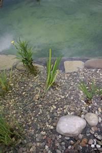 Jardin De Reve : cascade et bassin de r ve 2 ~ Melissatoandfro.com Idées de Décoration