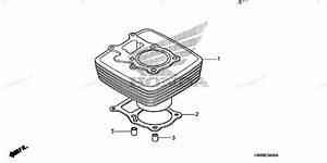 Honda Atv 2007 Oem Parts Diagram For Cylinder