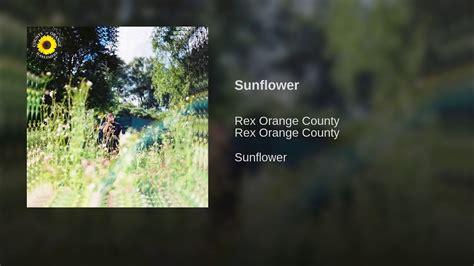 Sunflower Chords