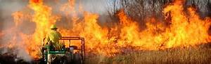 Benefits Of Prescribed Burning And Controlled Burns To