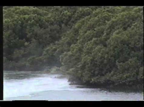 Boat Crash Kentucky by Kentucky Thunder Drag Boat Crash In Adelaide 1998 Youtube