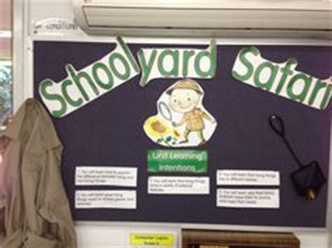 schoolyard safari science images science biology