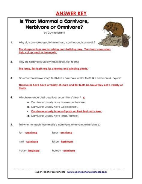 carnivores herbivores or omnivore