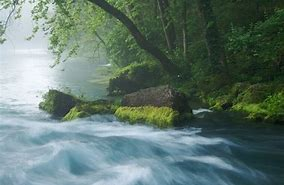 Image result for pictures of  foggy creek rise in spring