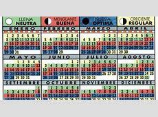 Pesca de Costa en Buenos Aires Calendario Lunar
