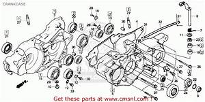 Honda Trx 250r Engine Diagram