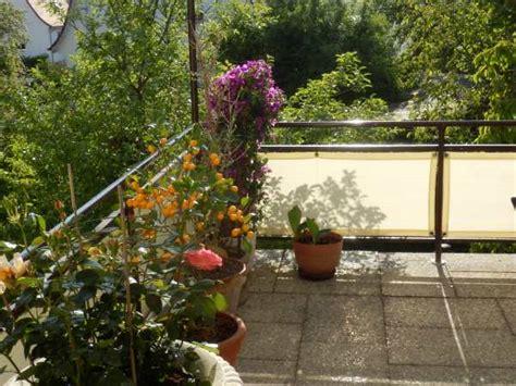 Sichtschutz Garten Nach Mass by Windschutz Shop Pvc Lamellenvorhang Abdeckplane Als