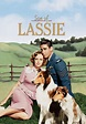 Son of Lassie (1945) for Rent on DVD - DVD Netflix