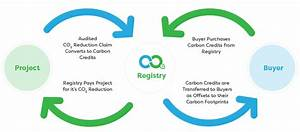 The Carbon Offsetting Process