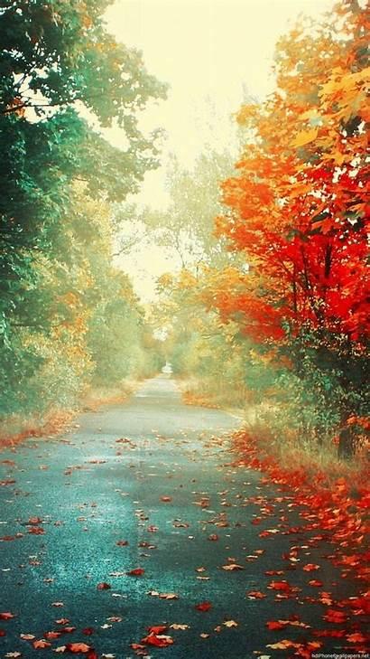 Fall Portrait Wallpapers Autumn Vertical Landscape Nature