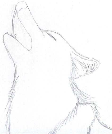 basic wolf howling   draw draw art drawings