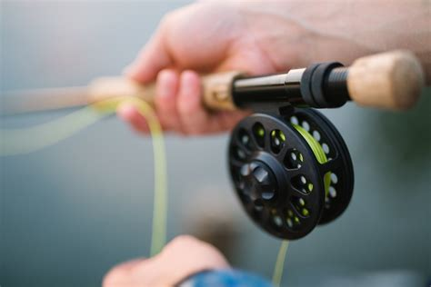 fishing reels  common types