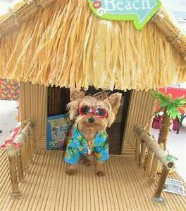 tiki hut dog house yorkie pinterest casa de perro With tiki dog house