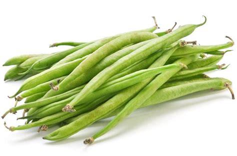 haricots verts cuisin駸 le haricot vert cuisine de bébé