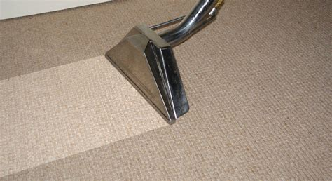 carpet cleaning professional carpet cleaners