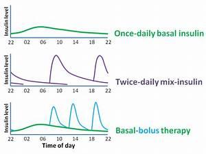 Basal Insulin Berechnen : insulin regimens management diapedia the living textbook of diabetes ~ Themetempest.com Abrechnung