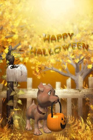 cute happy halloween dog pictures   images