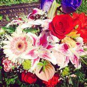 bears roses 18 fotos y 20 rese 241 as florister 237 as