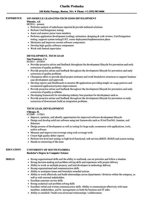 Sle Resume For Technical Lead by Development Tech Lead Resume Sles Velvet