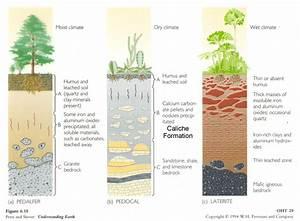 Images For  U0026gt  Soil Types