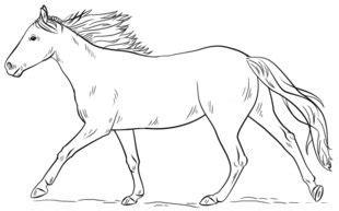 jak narysowac konia biegnacego krok po kroku rysowanie
