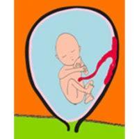 9eme mois de grossesse bebe bouge beaucoup 9eme mois de grossesse bebe bouge beaucoup 28 images 17 meilleures id 233 es 224 propos de